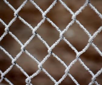 Ogrodzenie - skuteczna ochrona przed intruzami